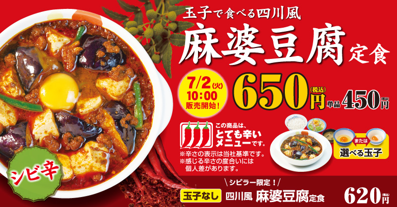 【画像】 松屋の麻婆豆腐定食がめちゃくちゃ美味そうなんだがwwwwwwwwwwwwwwwwwwwww
